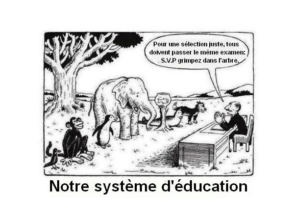 France Education
